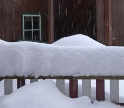Winter (Aiustria)