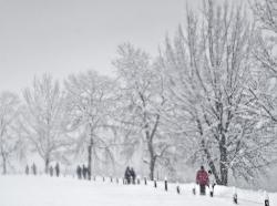Let it snow (Austria)