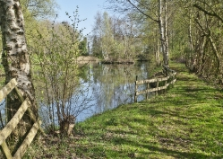 Spring Norfolk