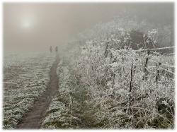 Pastel landscape_1